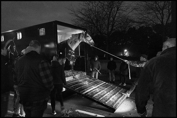 Jan Nabuurs Paardenmarkt Lottum 2020 (1)