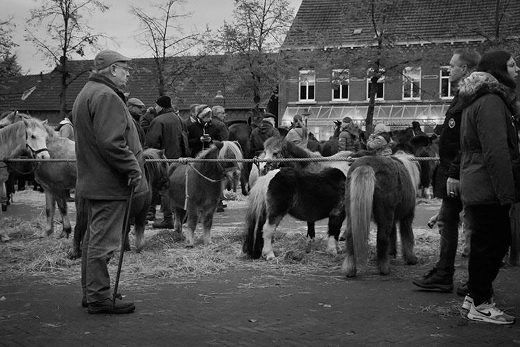 Jan Nabuurs Paardenmarkt Lottum 2020 (3)