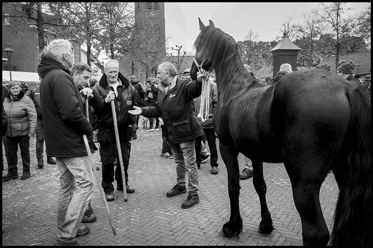 Jan Nabuurs Paardenmarkt Lottum 2020 (9)